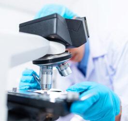 PROFESSIONAL, SCIENTIFIC & TECHNICAL SERVICES
